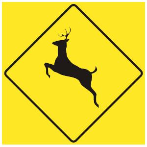 virginia deer crossing